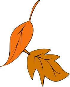 fall_image.jpg