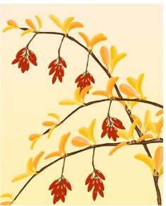 fall_image_2.jpg